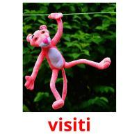 visiti picture flashcards