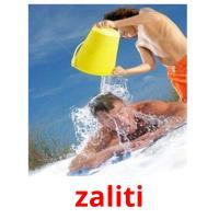 zaliti picture flashcards