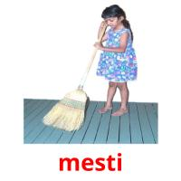 mesti picture flashcards