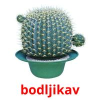 bodljikav picture flashcards