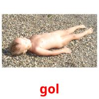 gol picture flashcards