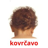 kovrčavo picture flashcards