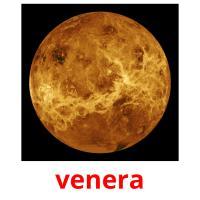 venera picture flashcards