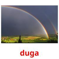duga picture flashcards