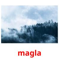 magla picture flashcards