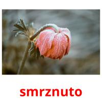 smrznuto picture flashcards