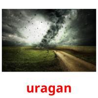 uragan picture flashcards