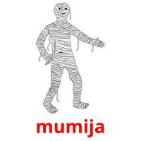 mumija picture flashcards