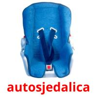 autosjedalica picture flashcards