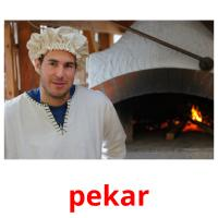 pekar picture flashcards