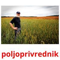 poljoprivrednik picture flashcards