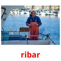ribar picture flashcards