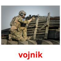 vojnik picture flashcards