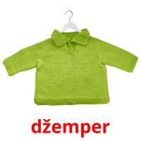 džemper picture flashcards