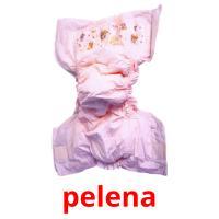 pelena picture flashcards