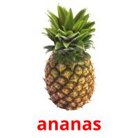ananas picture flashcards