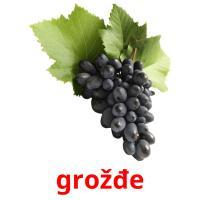 grožđe picture flashcards