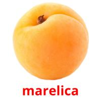 marelica picture flashcards