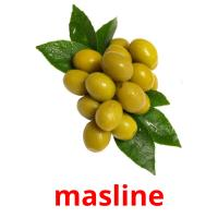masline picture flashcards