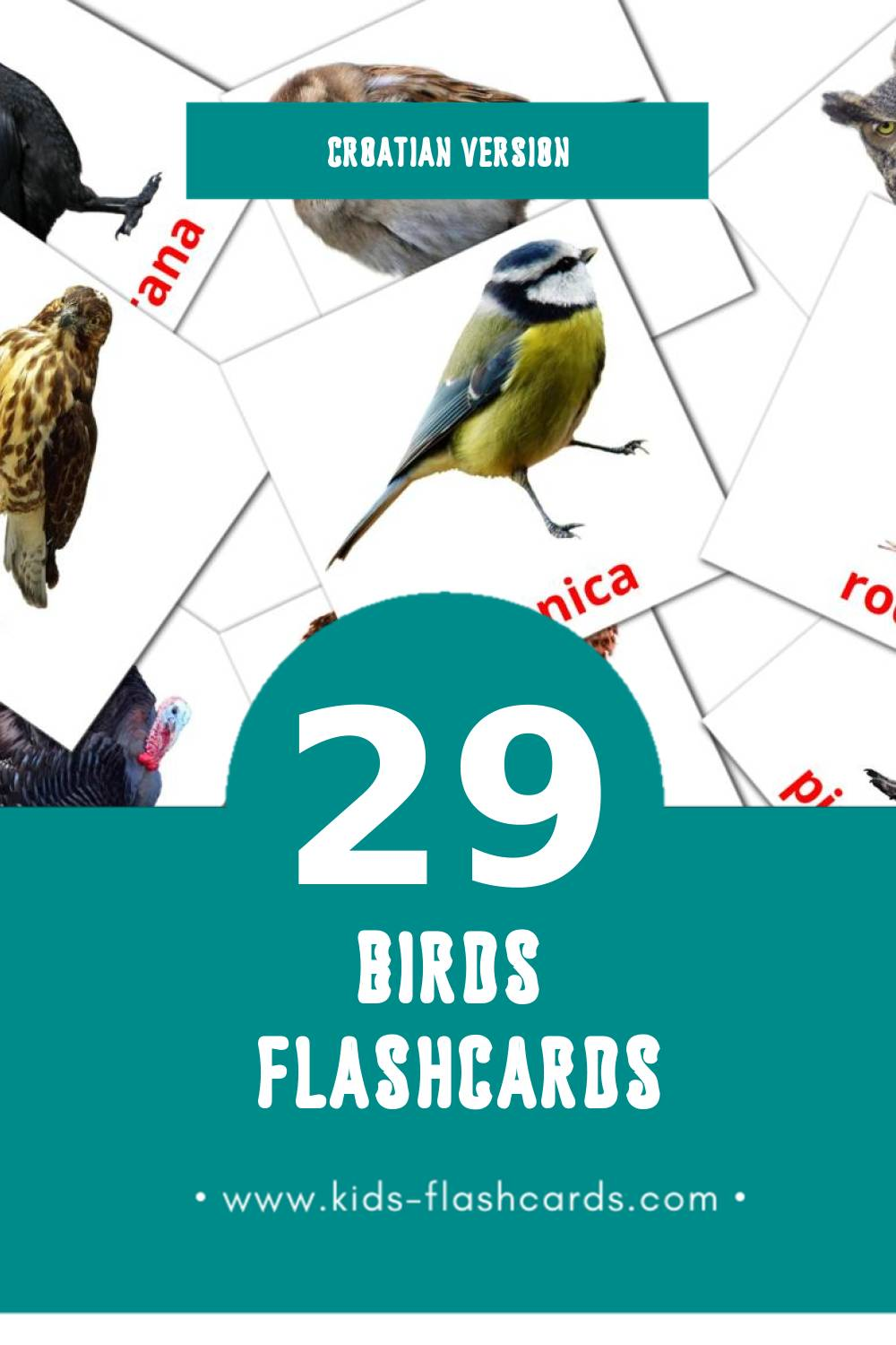 Visual ptice Flashcards for Toddlers (27 cards in Croatian)