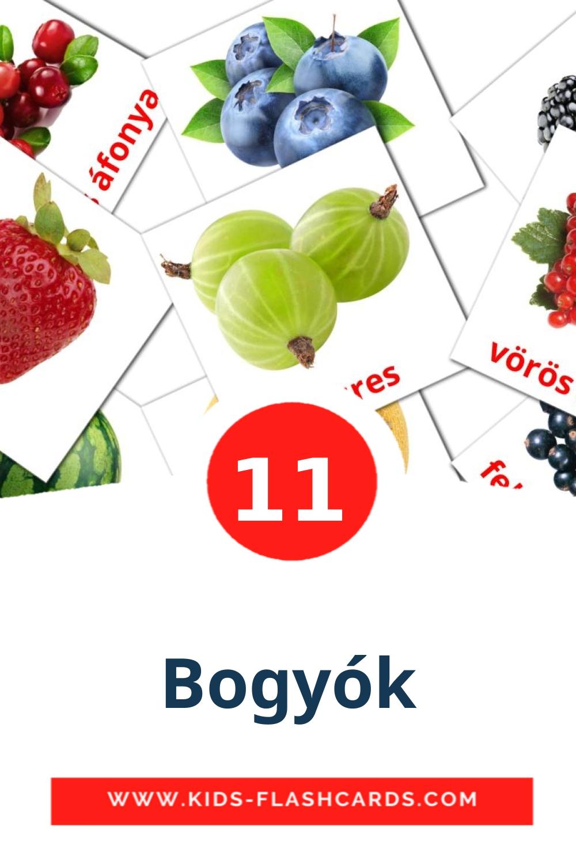 11 Bogyók Picture Cards for Kindergarden in hungarian