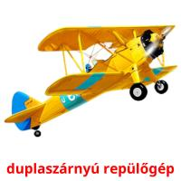 duplaszárnyú repülőgép picture flashcards