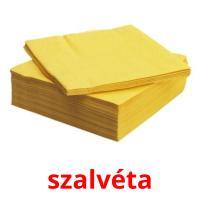 szalvéta picture flashcards