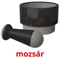 mozsár picture flashcards