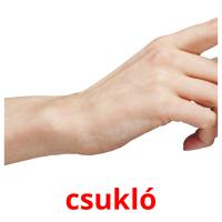 csukló picture flashcards