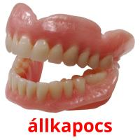 állkapocs picture flashcards