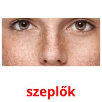 szeplők picture flashcards