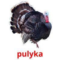 pulyka picture flashcards