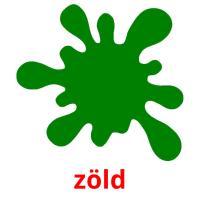 zöld picture flashcards