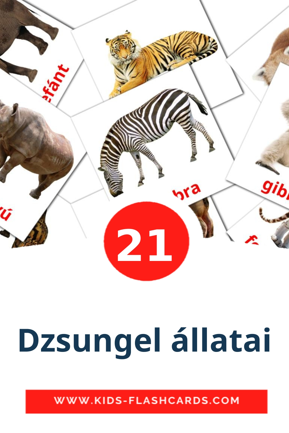 21 Dzsungel állatai Picture Cards for Kindergarden in hungarian