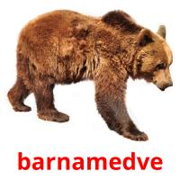barnamedve picture flashcards