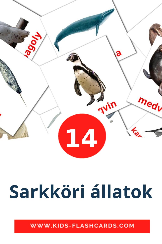 14 Sarkköri állatok Picture Cards for Kindergarden in hungarian