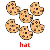 hat picture flashcards