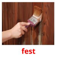fest picture flashcards