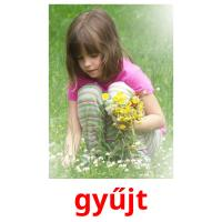 gyűjt picture flashcards