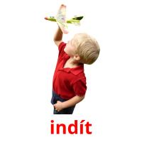 indít picture flashcards
