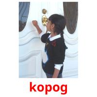 kopog picture flashcards