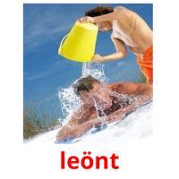 leönt picture flashcards