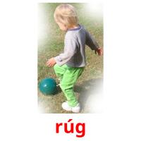 rúg picture flashcards