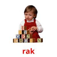rak picture flashcards