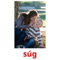súg picture flashcards