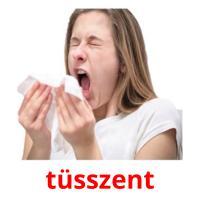 tüsszent picture flashcards