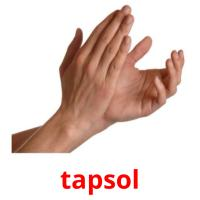 tapsol picture flashcards