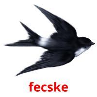 fecske picture flashcards