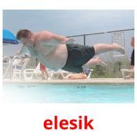 elesik picture flashcards