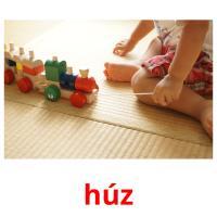 húz picture flashcards